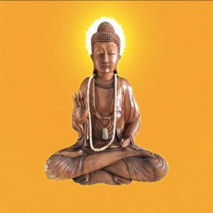 Metta meditation af Gudrun Boost