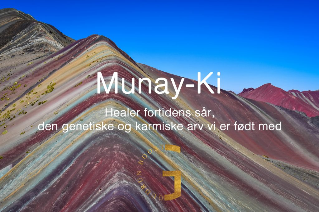 MunayKi_header_gudrunboost